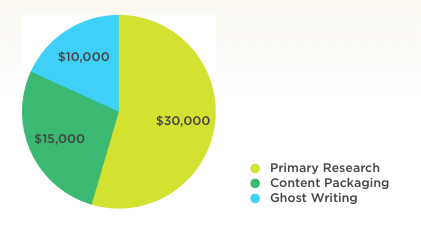 Pie Chart: Content Development and Packaging Budget Allocation